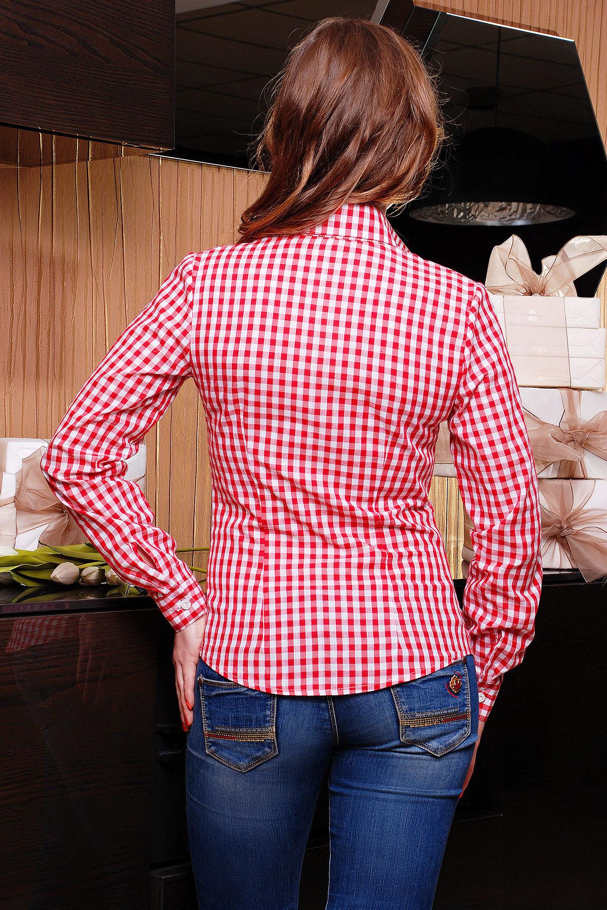 женская трикотажная красная блуза в белую клетку. блуза Шериф д/р. Цвет: красный-клетка