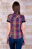 . блуза Шотландка к/р. Цвет: горчичный-т.синяя отделка