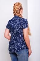 ситцевая голубая блуза для полных с морским принтом. блуза Якира-Б к/р. Цвет: т.синий-якорь