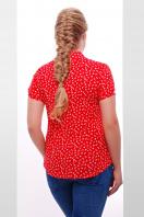 ситцевая голубая блуза для полных с морским принтом. блуза Якира-Б к/р. Цвет: красный-якорь