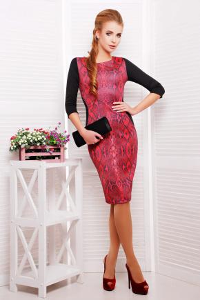 Питон красный платье Саламандра д/р. Цвет: принт-черная отделка